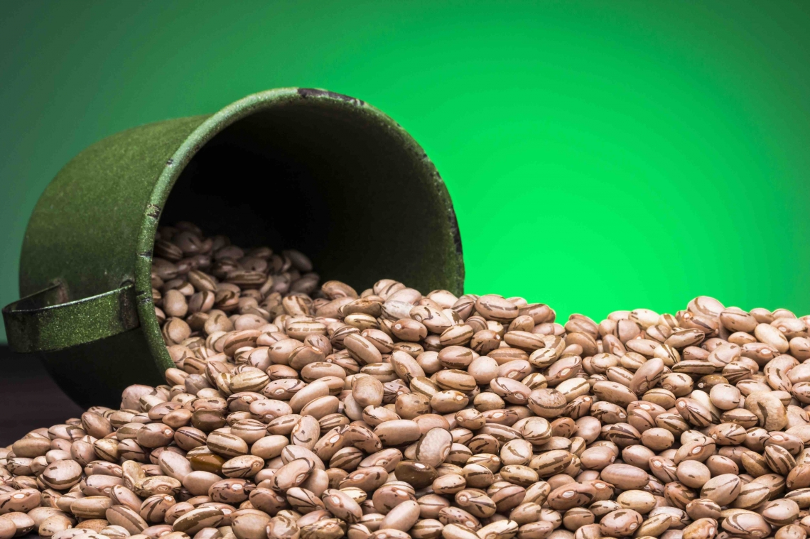 Brazil's Second Dry Bean Crop Enters Market