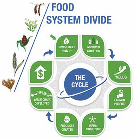 The Unspoken - Food System Divide