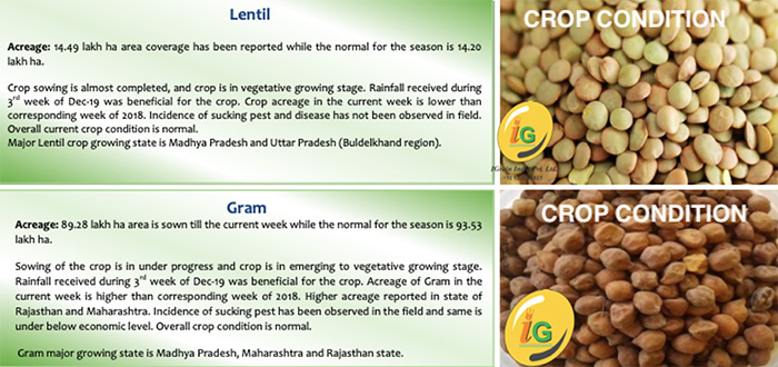 Lentil and Gram Crop Reports from IGrain India Pvt. Ltd, Delhi-India (based on Department of Agriculture December 27 report)