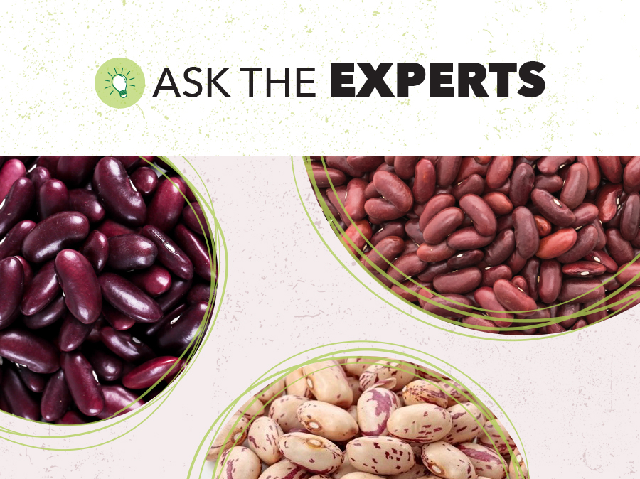 Red and Speckled Beans Global Outlook