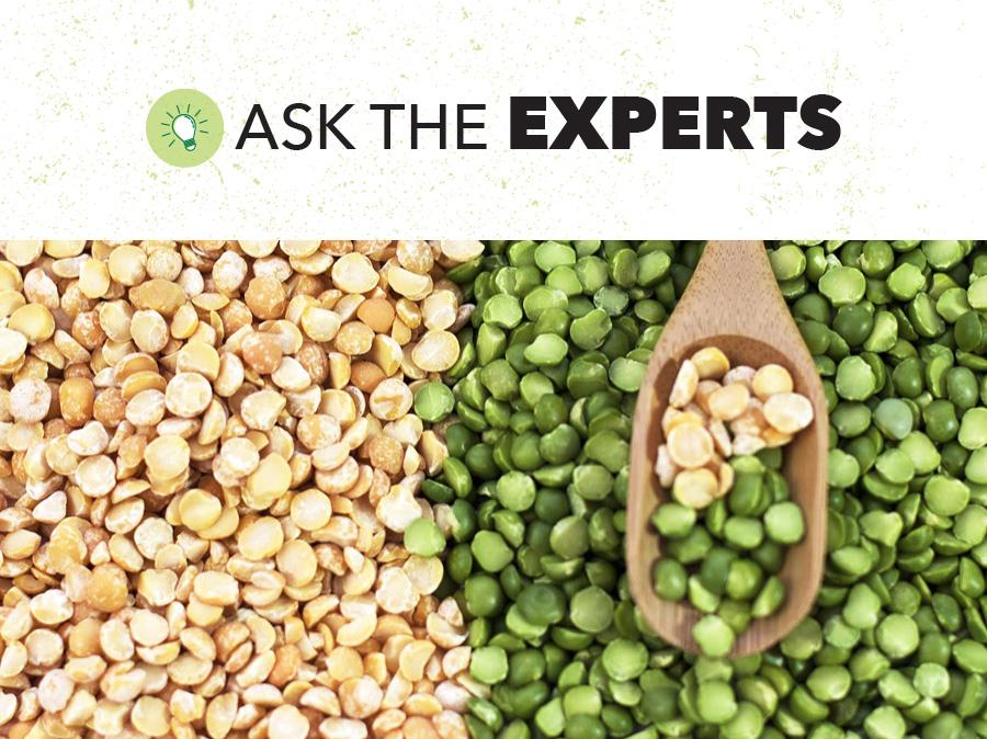 Dry Peas Global Outlook