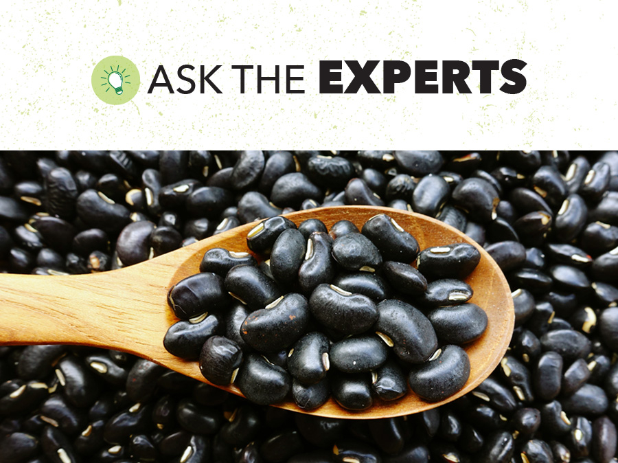 Black Beans Global Outlook