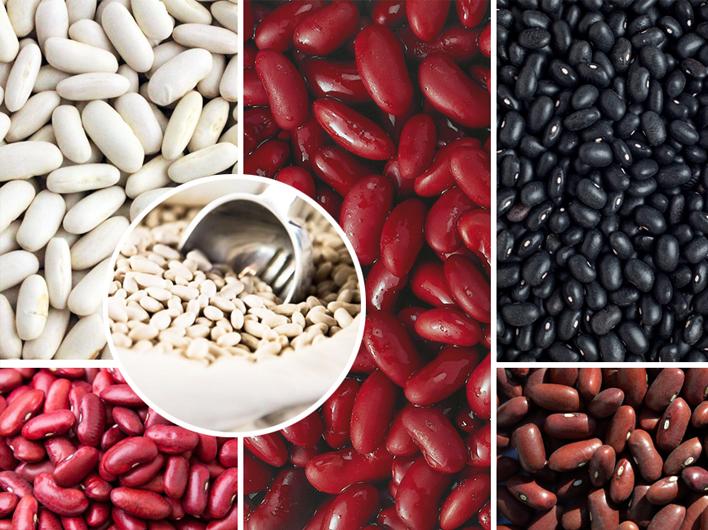Argentina's 2020 Dry Bean Harvest