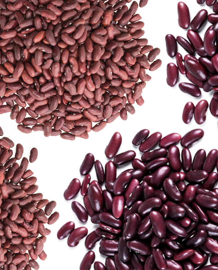 Red & Speckled Beans Global Outlook at Pulses 2.0