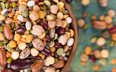 The International Year of Pulses: Keeping the Momentum Beyond 2016