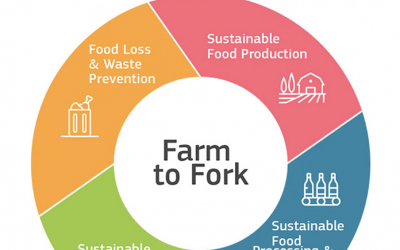 What the EU's Farm to Fork Strategy Means for the Global Pulse Industry