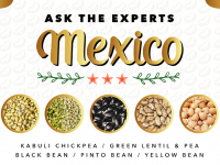 Ask the Experts Mexico