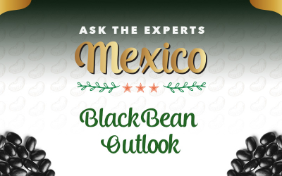 GPC Ask the Experts Mexico: Black Bean Outlook