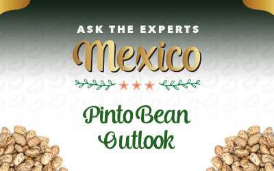 GPC Ask the Experts Mexico: Pinto Bean Outlook