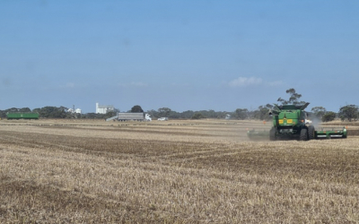 Australia Kicks Off 2020/21 with Abundant Supplies of New Crop Pulses