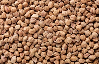 NCDEX Chana Report - March 18, 2021