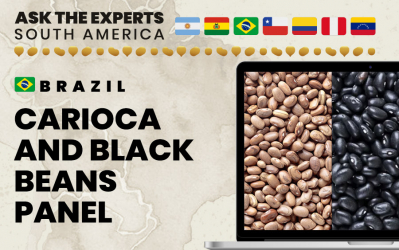 Carioca and Black Beans Panel at Ask the Experts: South America