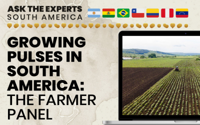 Growing Pulses in South America: The Farmer Panel at Ask the Experts: South America