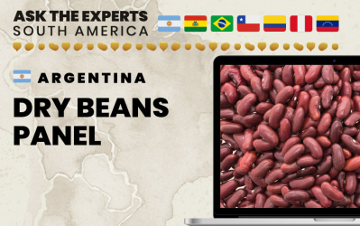 Argentina Dry Beans Panel at Ask the Experts: South America